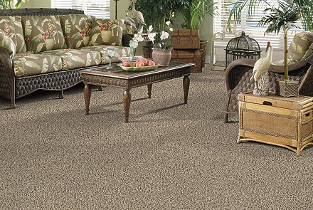 Mohawk aladdin carpet sles carpet vidalondon for Columbia carpets enfield